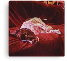 Artist's Dog on Sofa Canvas Print