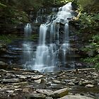 Ganoga Falls As Summer Arrives by Gene Walls