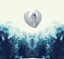 Swan by Vera Penkova