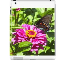 Pipevine Swallowtail  iPad Case/Skin
