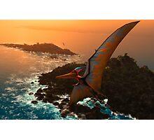 Pteranodon sternbergi Photographic Print