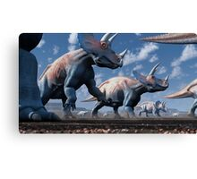 Triceratops Herd Canvas Print