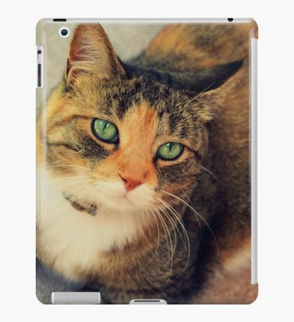 Lady Isabella iPad Case/Skin