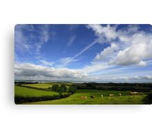 Rolling Hills of County Down Canvas Print