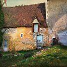 A French Country Fairytale by dawne polis