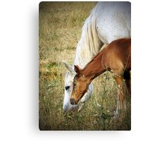 """""""Willow & Mom"""" Canvas Print"""