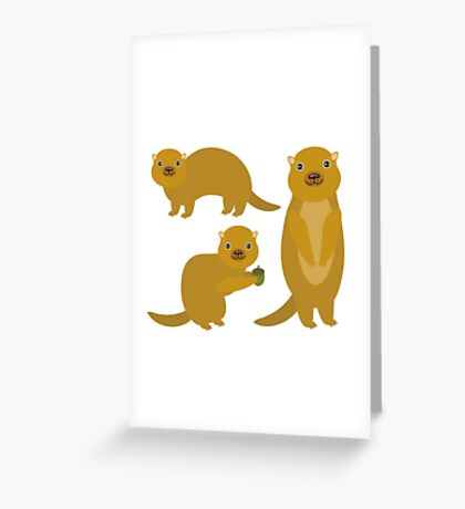 Squirrels with an Acorn Greeting Card