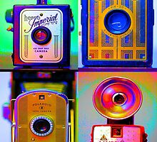 Camera Collage by michellevallese