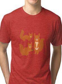 Fluffy Squirrels Tri-blend T-Shirt