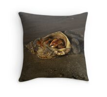 Hermit Crab on Fahan Beach Throw Pillow