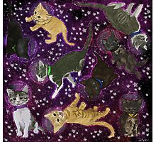 Space Kittens Photographic Print