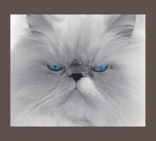Blue-eyed cat portrait Baby Tee