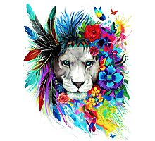 Painting lion Photographic Print