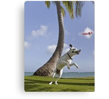 Zelda Playing In Paradise Canvas Print
