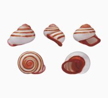 Striated Shells of Red One Piece - Short Sleeve