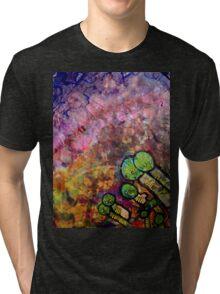 Pegasi Watchers by Sam Haycroft Tri-blend T-Shirt
