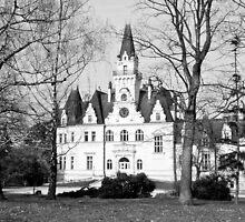 Castle Budmerice, Slovakia by ninjasnap