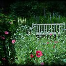 Inviting Bench to Relax by Eva Thomas
