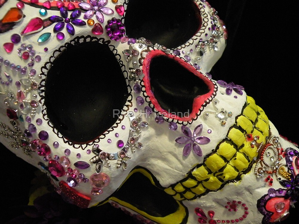 Day Of The Dead Art! by Rita  H. Ireland