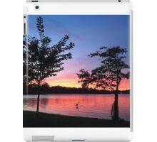 DC scenic  iPad Case/Skin
