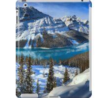 Peyto Lake Winter Paradise iPad Case/Skin