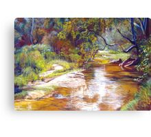 Hughes Creek, Avenel Canvas Print