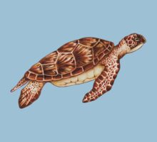 Green Sea Turtle Kids Clothes