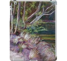 River Track iPad Case/Skin