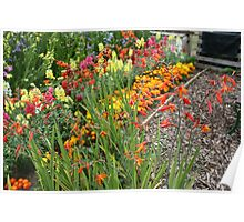 Flowers in an English country garden Poster