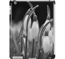 New beginnings and hope iPad Case/Skin