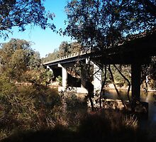 Bridge Across the Goulburn, Tallarook  Vic  Australia by Margaret Morgan (Watkins)