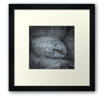 Largest reclining Buddha statue at Gal Viharaya Framed Print