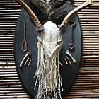 deer skull mount with branches by AnjiMarth