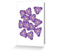 There'll Be Crocuses Greeting Card