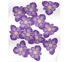 There'll Be Crocuses Poster