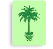 Potted Palm Tree, emerald and light green Canvas Print
