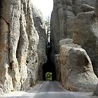 Needles Highway, South Dakota by Margaret  Hyde
