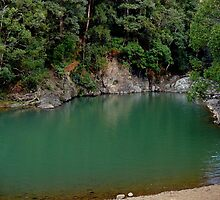 Currumbin Rock Pool, Queensland by Margaret  Hyde