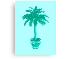 Potted Palm Tree, turquoise and aqua Canvas Print