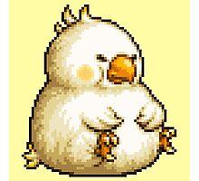 Fat Chocobo boss sprite - Final Fantasy 3 (FFRK) Photographic Print