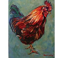 Brown rooster, Inis Mor, Isle of Aran. 2012Ⓒ Oil on canvas. 51.x41cm SOLD Photographic Print
