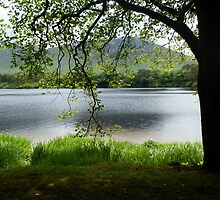 Pallacapall Lough by Elle Tamata