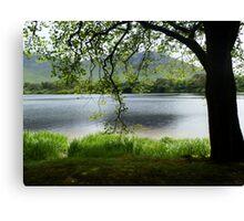 Pallacapall Lough Canvas Print