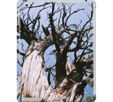 Dune Tree iPad Case/Skin