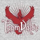 Team Valor by David Ayala