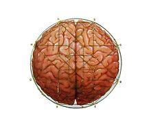 Cerebral Hyperstereogram III by Kathryn Skelsey