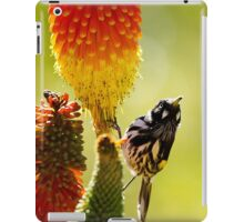 the honey eater iPad Case/Skin