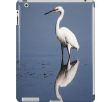 reflection bird iPad Case/Skin