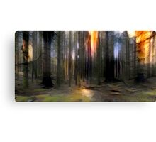 Into The Pine Forest Canvas Print