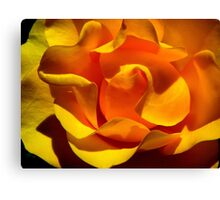 Inner Life of the Venice Beach Rose 1 Canvas Print